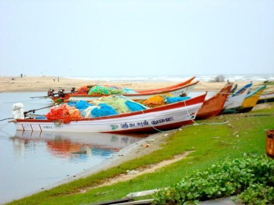 Pondicherry, India: colorful boats