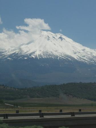 Mount Shasta Picture