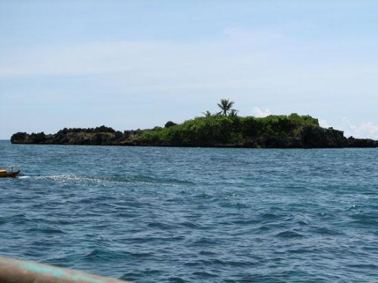 Crocodile Island, PI. Great snorkeling!
