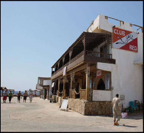 Club Red Dahab: dive center downstairs, rooms over looking the sea upstairs
