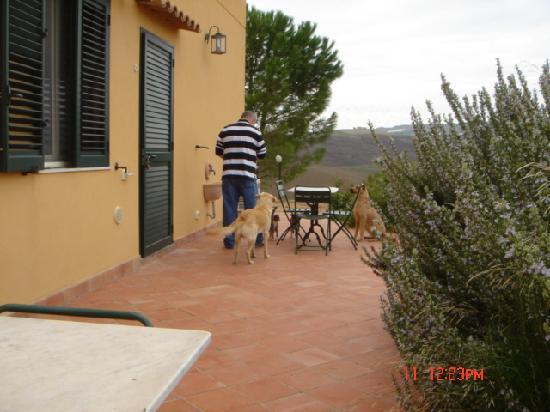 Azienda Agricola Silvia Sillitti : View