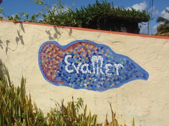Evamer: enter Evamer