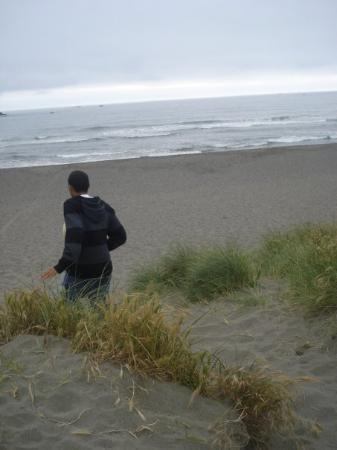 Bilde fra Moonstone Beach