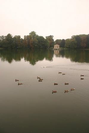 Bilde fra Fontainebleau