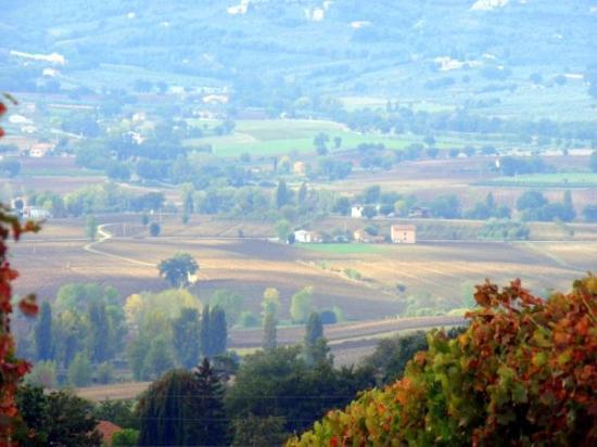 Zdjęcie Montefalco