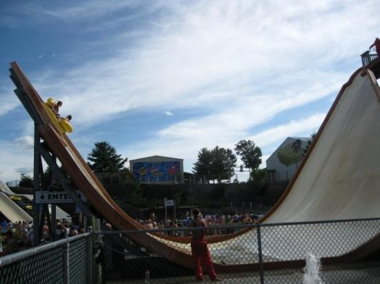 The Stingray Picture Of Noah S Ark Water Park Wisconsin