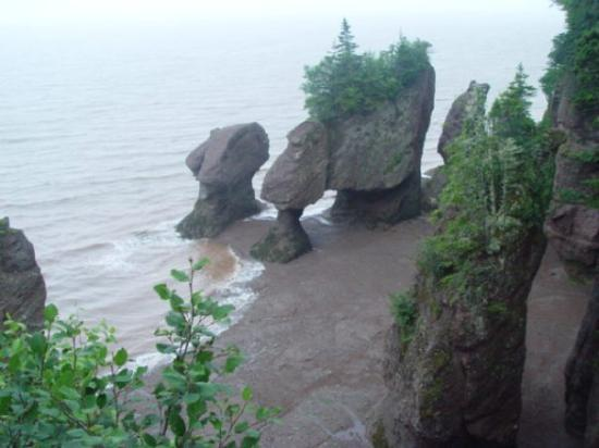 Alma, Canada: tide coming in fast at Fundy National Park
