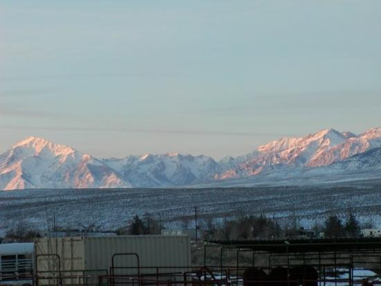 Bishop, CA: View over the horse corrals!