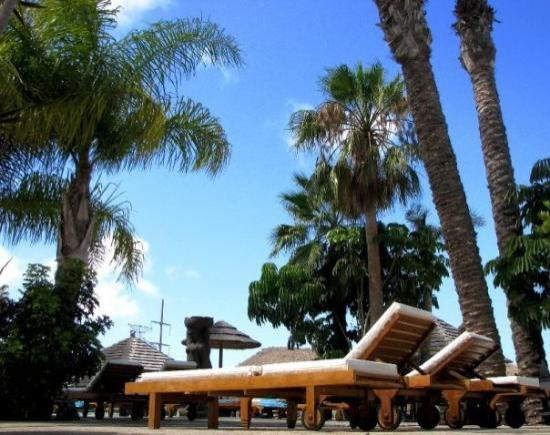 Regency Torviscas Apartments and Suites Photo