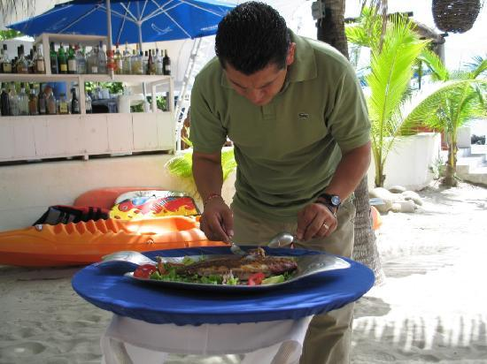 Fresh Grilled Red Snapper Under Palapa Picture Of Aura Del Mar