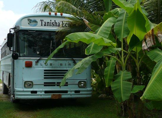 Tanisha Tours