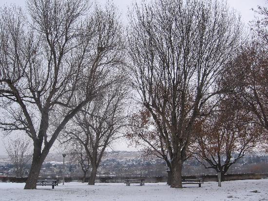 Economy Inn Wenatchee: Wenatchee Winter at Riverfront Park