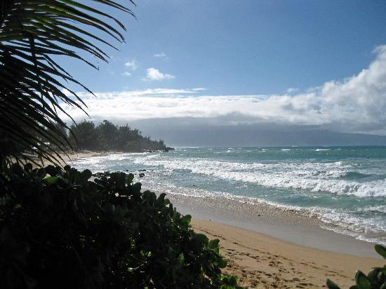 Paia Inn Hotel: Only a short walk to the beach