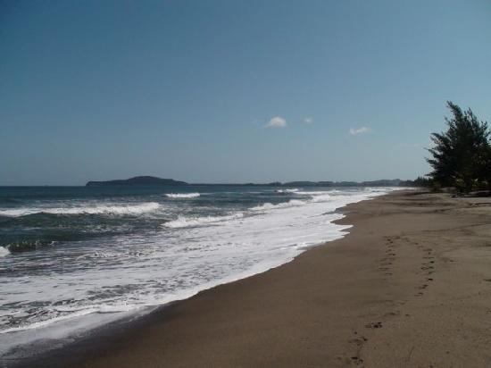 Caribbean Coral Inn: Beach