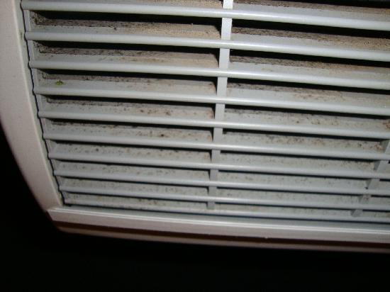 Weslaco, TX: Roach Poop or Mold in Air Conditioner Vent