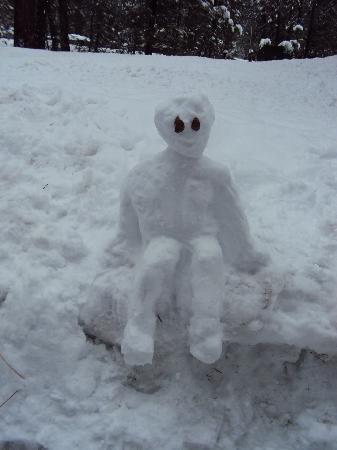 Donner Lake Inn Bed and Breakfast: Snow guy
