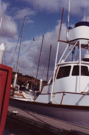 1991 Dana Point Harbor