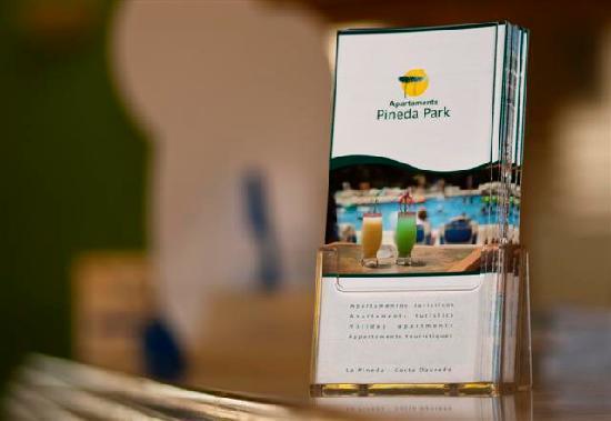 Apartamentos Pineda Park: recepcion