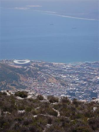 Cape Town Central, South Africa: Panorama con lo stadio!