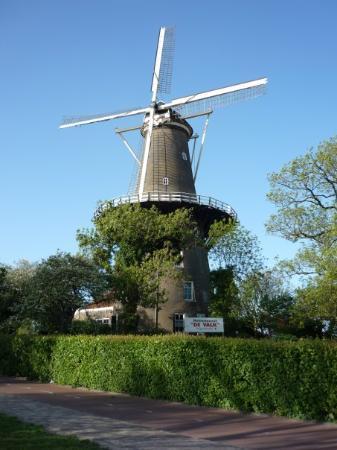 Leiden照片