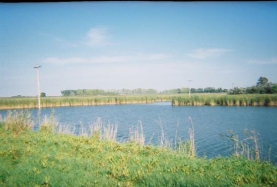 Aneta, North Dakota: aneta dam