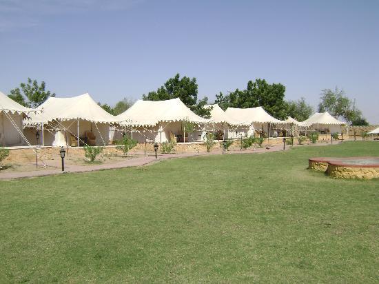 Mirvana Nature Resort and Camp: tents