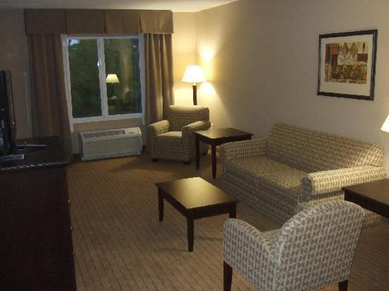 Holiday Inn Express & Suites Fort Myers- The Forum: Our Lounge area suite 302
