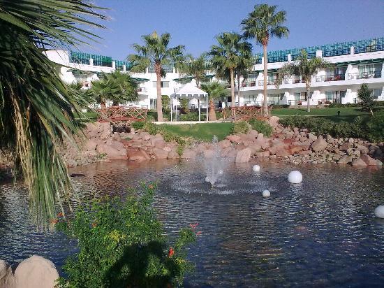 Hilton Sharm Waterfalls Resort: Garden View