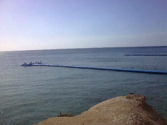 Hilton Sharm Waterfalls Resort: Diving Pontoon over the reef