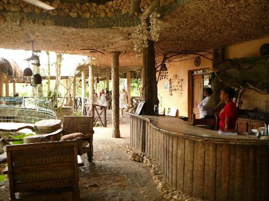 Paraiso Cano Hondo: The front desk and restaurant area