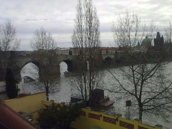 Archibald At the Charles Bridge: View from Hotel Window