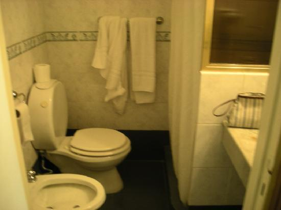 Hotel Guerrero: The bathroom