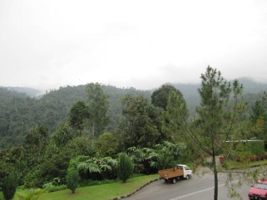 Bukit Fraser Photo