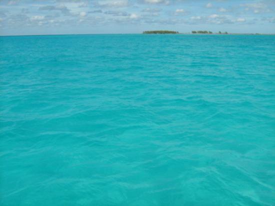 Cayo Coco, Kuba: OMG the water was sooooo beautiful