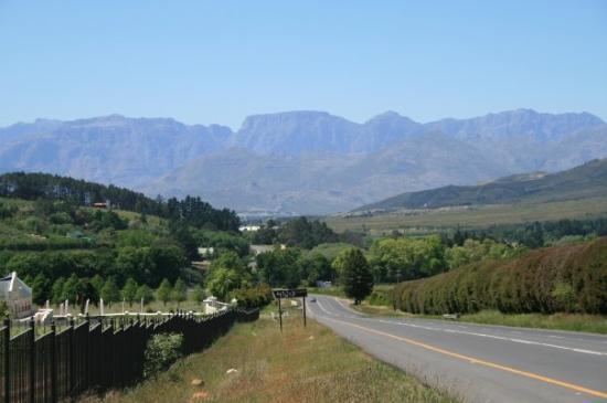 Stellenbosch Picture