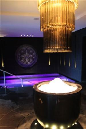 The Europe Hotel & Resort : Eisbrunnen an der Sauna