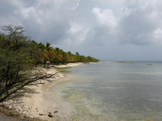Mustique: IMG_0186