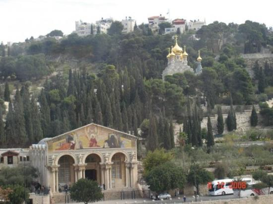 Garden of Gethsemane: Mt. Of Olives with the Church of all Nations