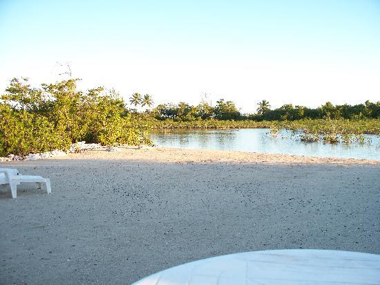 New Beach at Mangrove Cay Inn 2