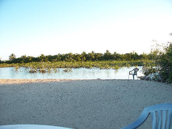 New Beach at Mangrove Cay Inn 3