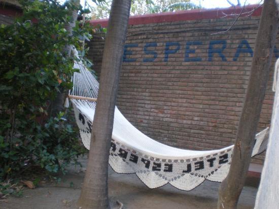 Hostel Esperanza照片