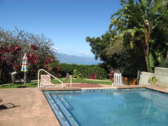 Banyan Bed and Breakfast Retreat: Kahului Harbor view from pool