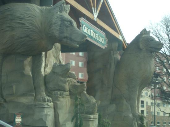 Great Wolf Lodge: Giant Wolf Statues