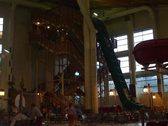 Great Wolf Lodge: All the Stairs To The Waterslides
