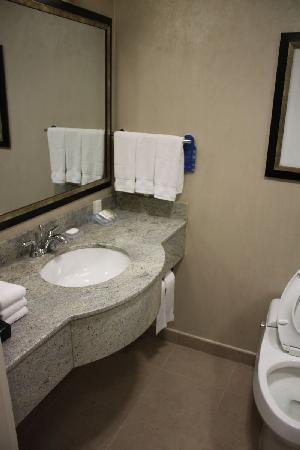Hilton Garden Inn New York/West 35th Street: Bathroom Vanity