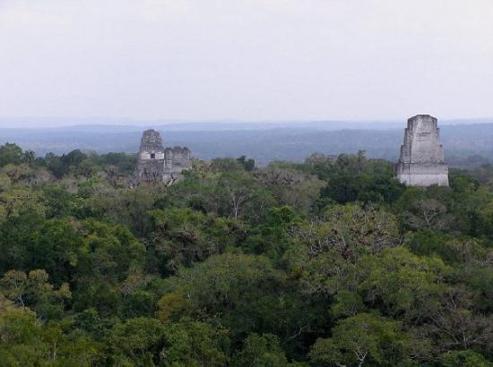 Tikal Cityscape Any You Guys Star Wars Fans Remember This 티칼 국립 공원 Peten Department 사진