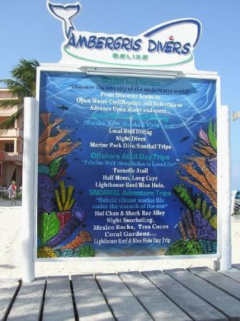 Bilde fra Ambergris Divers
