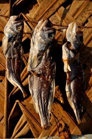 Fish Market, Diu