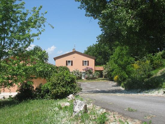 Arriving at Locanda della Valle Nuova: broom, roses and honeysuckle