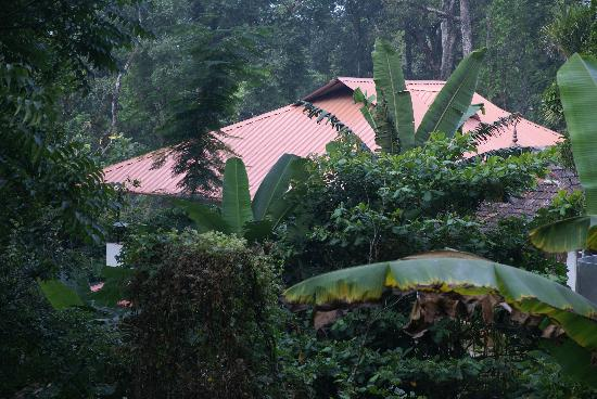 Rose Gardens Homestay: the house, picture from road